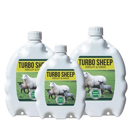 Turbo Sheep Agridirect   agridirect ie